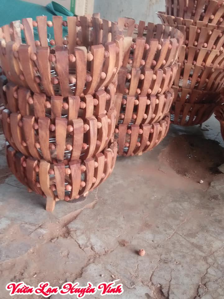 Chậu trồng lan bằng gỗ có tính thẩm mỹ tốt và độ bền cao.