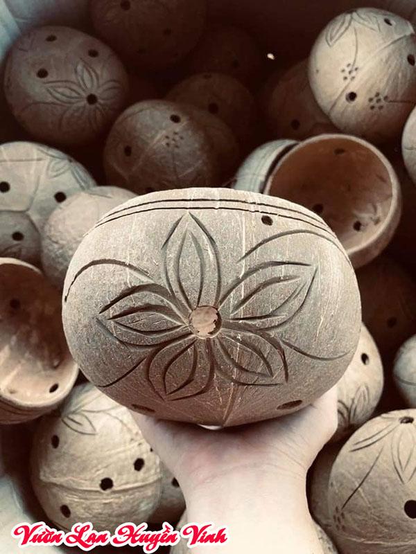 Chậu lan bằng vỏ dừa tính thẩm mỹ tốt tuy nhiên cần xử lý cẩn thận trước khi trồng lan.