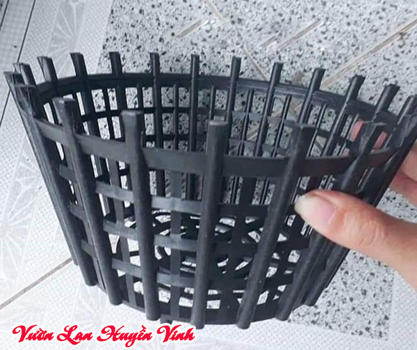 Chậu lan nhựa hơi giòn và nan thừa nên cần có lưới để lót.