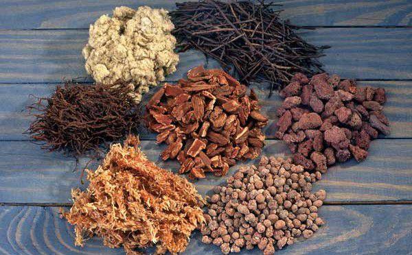 Cách trồng lan hồ điệp bằng vỏ thông là một trong những giá thể được lựa chọn nhiều.