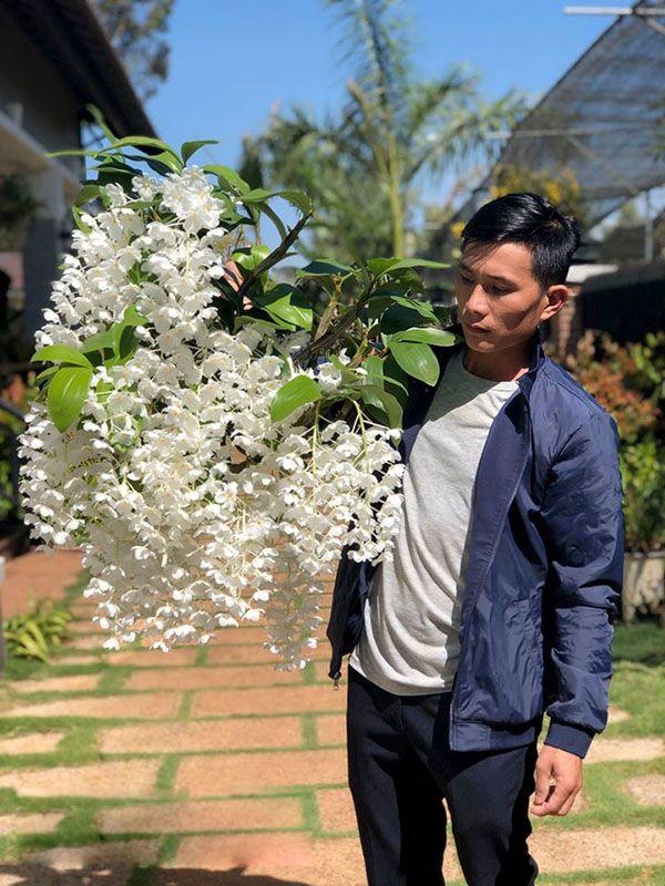 Lan Kiều Vuông đột biến hoa trắng cánh trắng