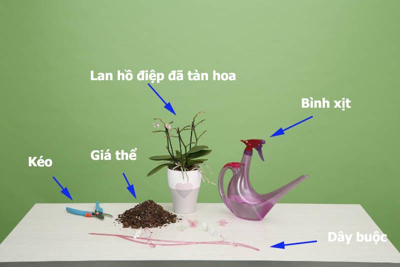 Những dụng cụ cần thiết khi muốn trồng lan quế tím vào chậu.