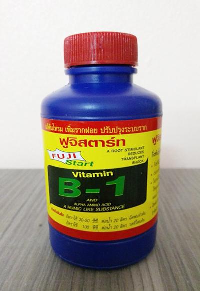 VITAMIN B1 THÁI LAN