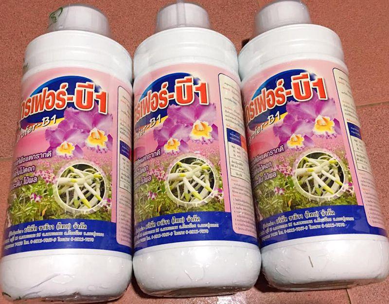 Thuốc b1 cho lan cung cấp vitamin B1 cho lan giúp lan ra rễ an toàn. Đây là loại vitamin 1 cho lan của Thái Lan